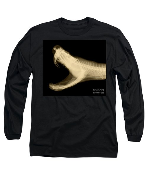 Eastern Diamondback Rattlesnake Long Sleeve T-Shirt by Ted Kinsman