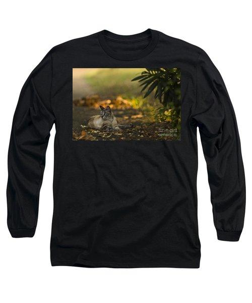 Evening Glow Long Sleeve T-Shirt