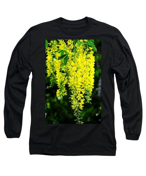 Golden Chain Tree Long Sleeve T-Shirt