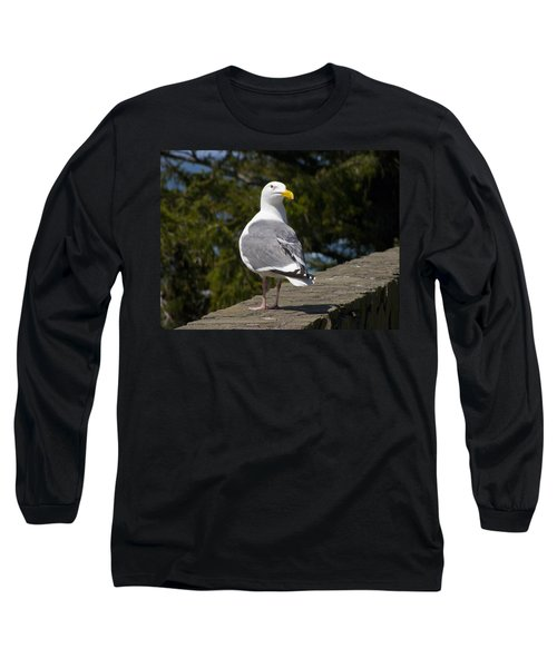 Long Sleeve T-Shirt featuring the photograph Seagull by David Gleeson