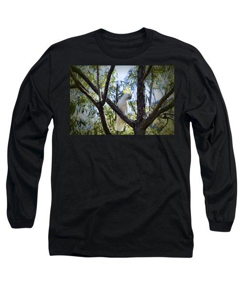 Sulphur Crested Cockatoo Long Sleeve T-Shirt by Douglas Barnard