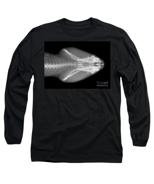 Eastern Diamondback Rattlesnake Head Long Sleeve T-Shirt by Ted Kinsman
