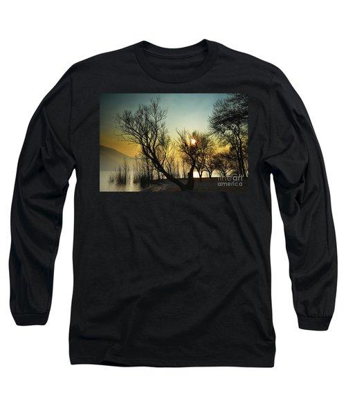 Sunlight Between The Trees Long Sleeve T-Shirt