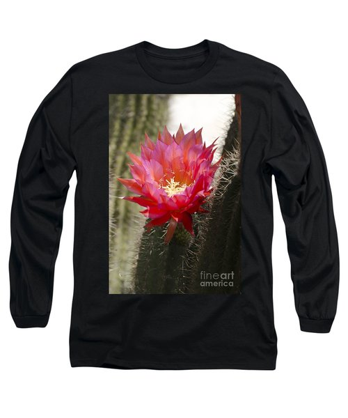 Red Cactus Flower Long Sleeve T-Shirt by Jim And Emily Bush