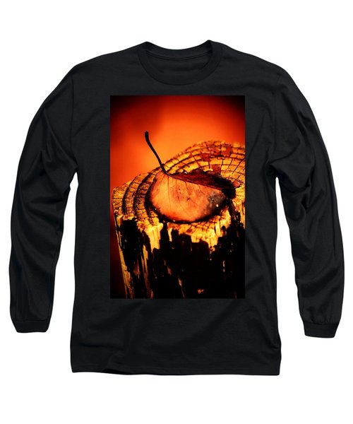 Long Sleeve T-Shirt featuring the photograph A Pose For Fall by Jessica Shelton
