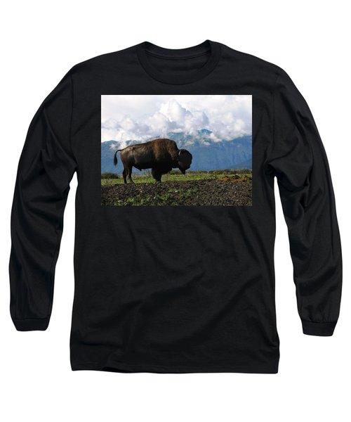 Long Sleeve T-Shirt featuring the photograph Alaskan Buffalo by Katie Wing Vigil