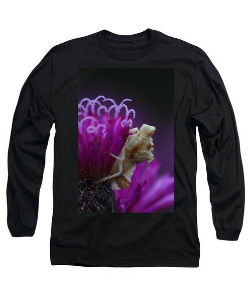 Ambush Bug On Tall Ironweed Long Sleeve T-Shirt