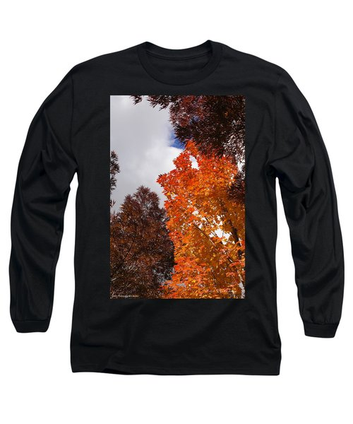 Autumn Looking Up Long Sleeve T-Shirt by Mick Anderson