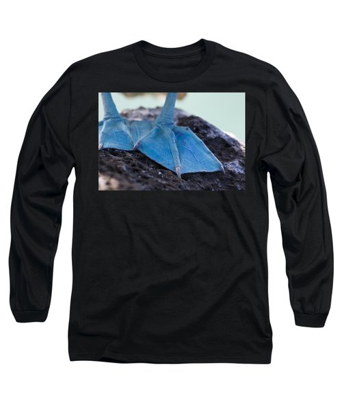 Blue Footed Booby Long Sleeve T-Shirt by Dave Fleetham