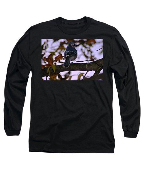 Blue Jay Long Sleeve T-Shirt by Joe Faherty