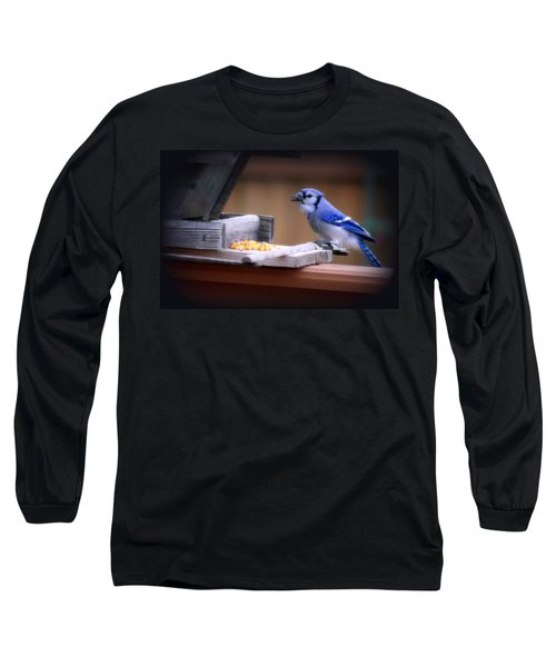Long Sleeve T-Shirt featuring the photograph Blue Jay On Backyard Feeder by Kay Novy