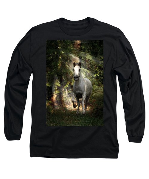Breaking Dawn Gallop Long Sleeve T-Shirt by Wes and Dotty Weber