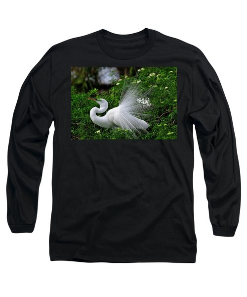 Brilliant Feathers Long Sleeve T-Shirt