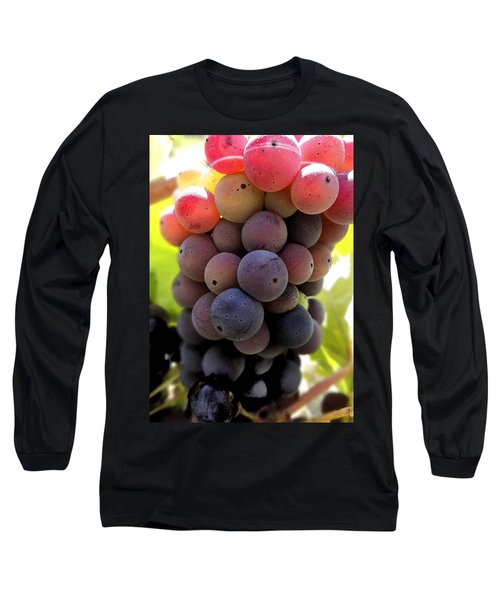 Bunch Of Ripening Grapes Long Sleeve T-Shirt by Anne Mott