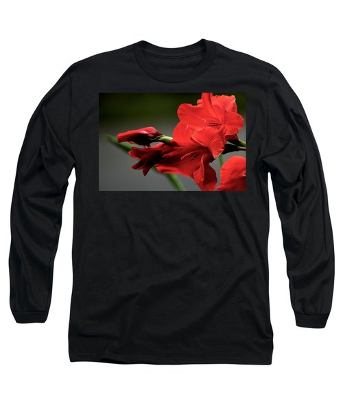 Chromatic Gladiola Long Sleeve T-Shirt