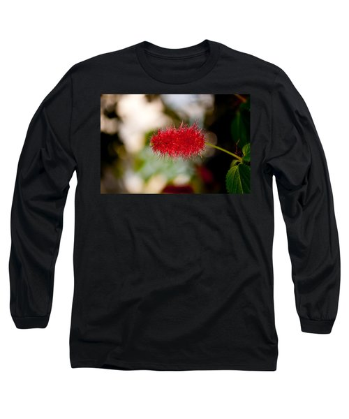 Long Sleeve T-Shirt featuring the photograph Crimson Bottle Brush by Tikvah's Hope