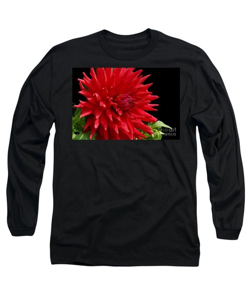 Decked Out Dahlia Long Sleeve T-Shirt by Cindy Manero