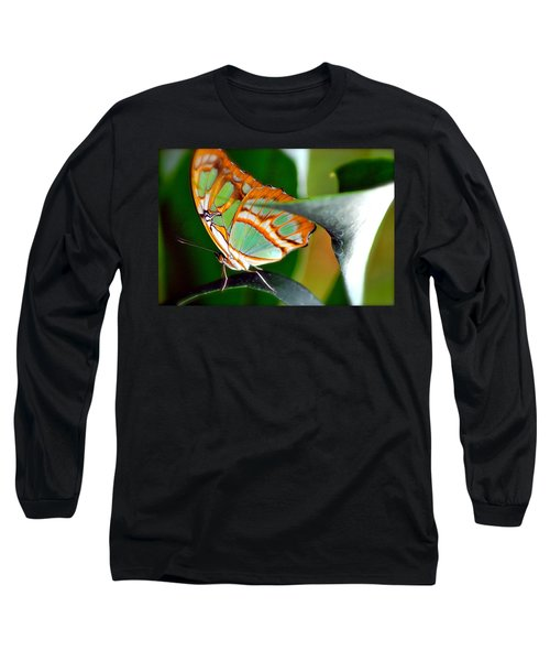 Long Sleeve T-Shirt featuring the photograph Dido Longwing Butterfly by Peggy Franz