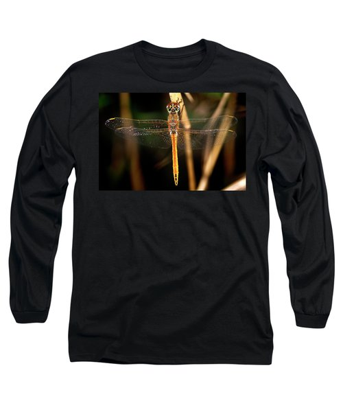 Long Sleeve T-Shirt featuring the photograph Dragon Fly 1 by Pedro Cardona