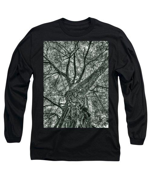 Finkles Landing Tree Long Sleeve T-Shirt