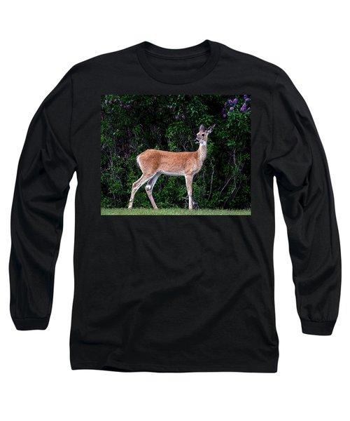 Long Sleeve T-Shirt featuring the photograph Flower Deer by Steve McKinzie