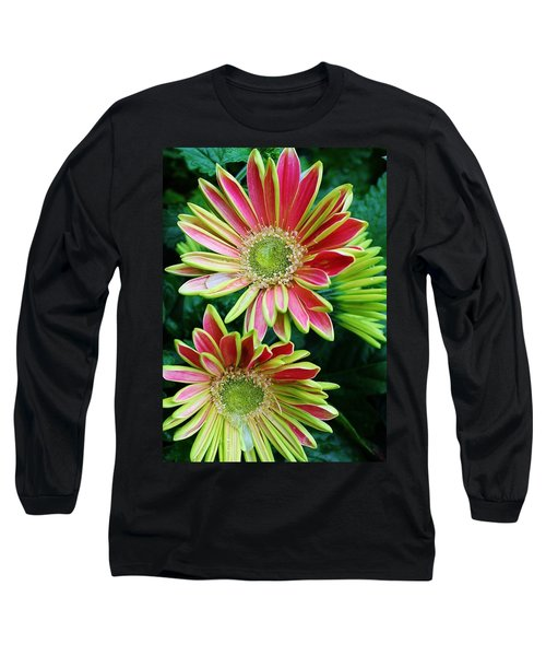 Gerber Daisies Long Sleeve T-Shirt by Bruce Bley