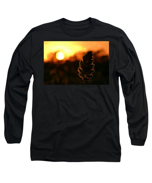 Glowing Leaf Long Sleeve T-Shirt by Zawhaus Photography