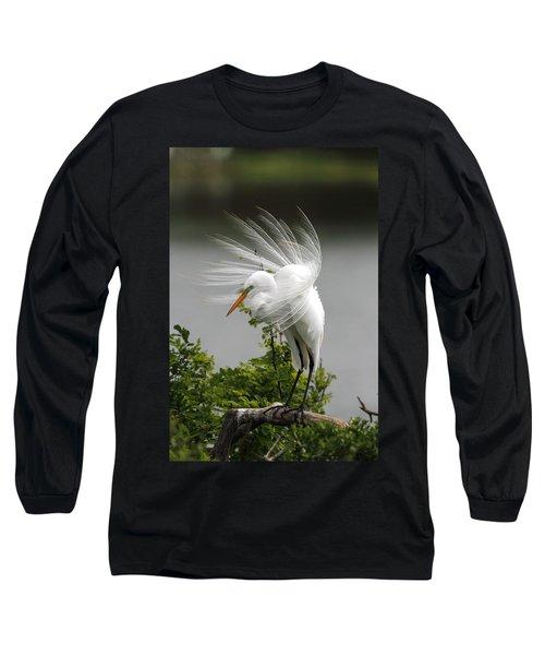 Great Egret Long Sleeve T-Shirt by Doug Lloyd
