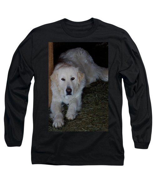 Guarding The Barn Long Sleeve T-Shirt