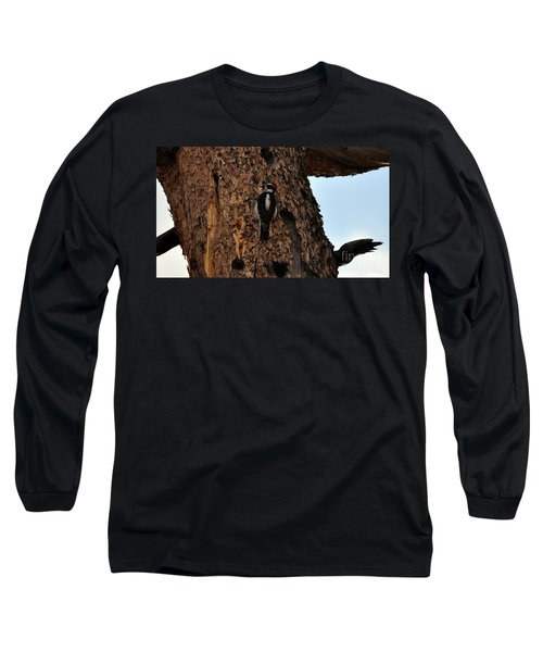 Hairy Woodpecker On Pine Tree Long Sleeve T-Shirt