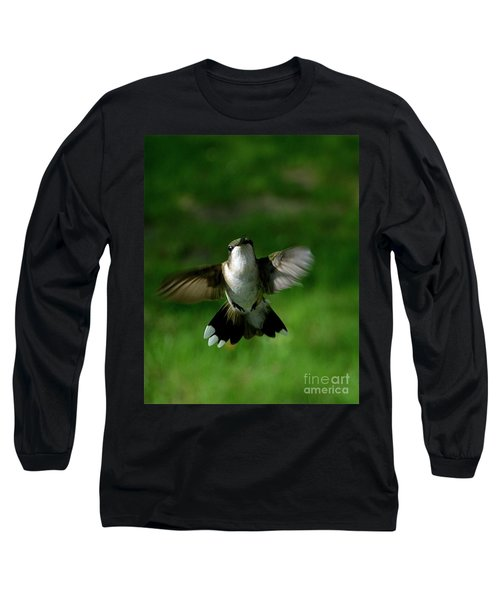 Hovering Hummingbird  Long Sleeve T-Shirt