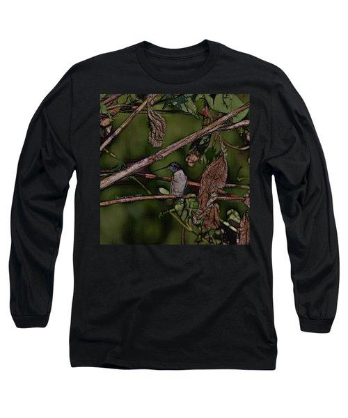 Hummingbird Waiting For Dinner Long Sleeve T-Shirt by EricaMaxine  Price
