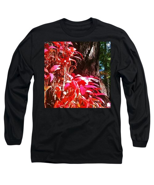 In The Shelter Of Your Arms Long Sleeve T-Shirt