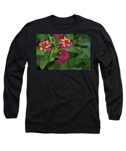 Long Sleeve T-Shirt featuring the photograph Lantana by Joseph Yarbrough