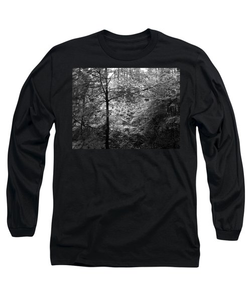 Light In The Woods Long Sleeve T-Shirt by Kathleen Grace