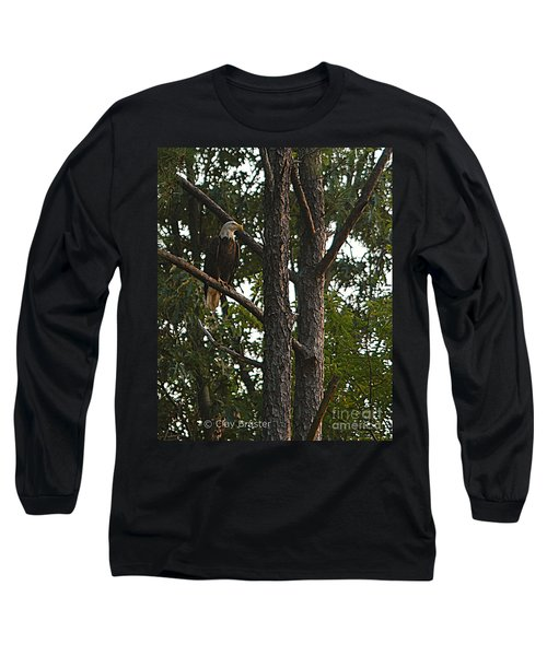 Majestic Bald Eagle Long Sleeve T-Shirt