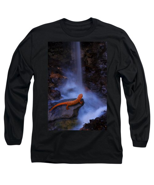 Newt Falls Long Sleeve T-Shirt by Ron Jones