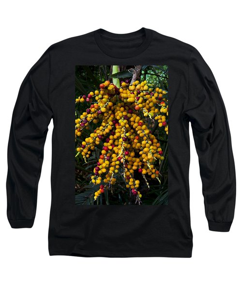 Long Sleeve T-Shirt featuring the photograph Palm Seeds Baroque by Steven Sparks