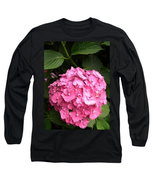 Pink Hydranga Long Sleeve T-Shirt by Claude McCoy