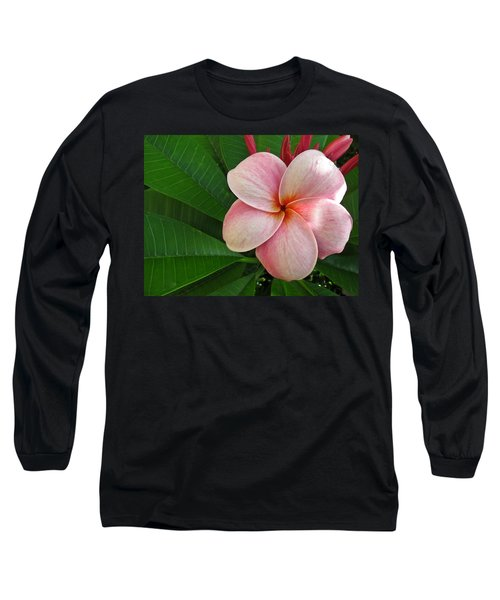 Pink Plumeria Long Sleeve T-Shirt
