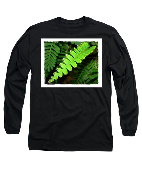 Polypody Long Sleeve T-Shirt by Judi Bagwell
