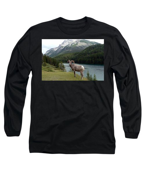 Portrait Of A Bighorn Sheep At Lake Minnewanka  Long Sleeve T-Shirt