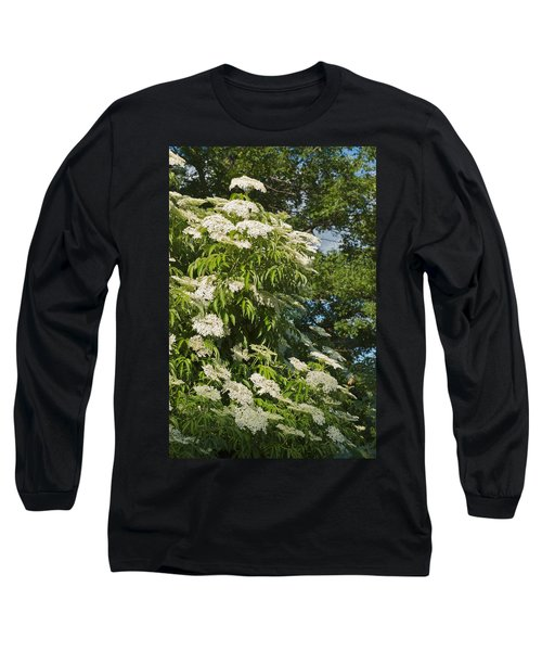 Potchen's Cascade Long Sleeve T-Shirt
