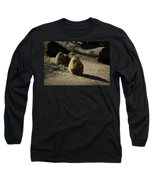 Prairie Dog Sees The Shadow Long Sleeve T-Shirt