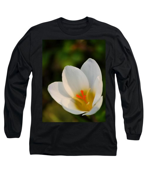 Pretty White Crocus Long Sleeve T-Shirt by JD Grimes