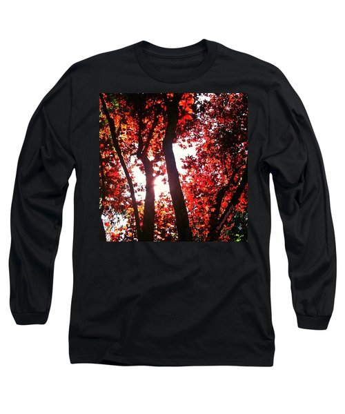 Reaching For Glory - Afternoon Light Long Sleeve T-Shirt