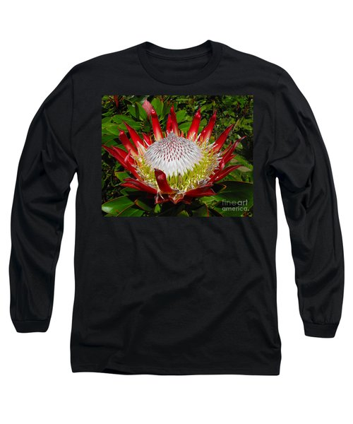 Red King Protea Long Sleeve T-Shirt by Rebecca Margraf