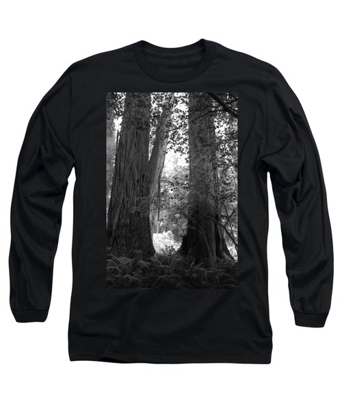 Redwood Pair Long Sleeve T-Shirt by Kathleen Grace