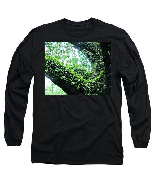Long Sleeve T-Shirt featuring the photograph Resurrection Fern by Lizi Beard-Ward