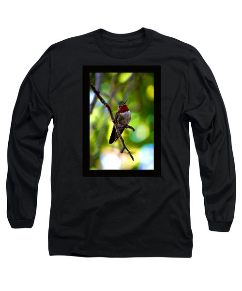 Long Sleeve T-Shirt featuring the photograph Ruby Throated Hummingbird by Susanne Still